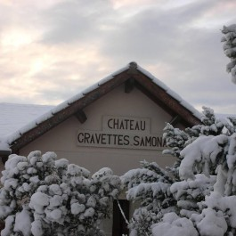 gravettes-samonac-265x265